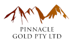 2018.06.15 - New Pinnacle logo.png