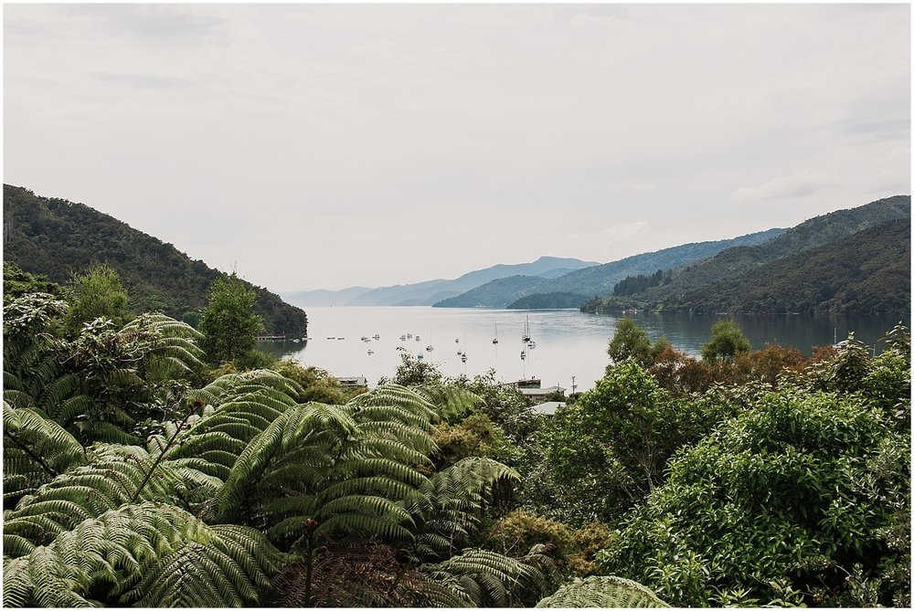 Anikiwa Bay - Marlborough Sounds - Carmen Peter photography
