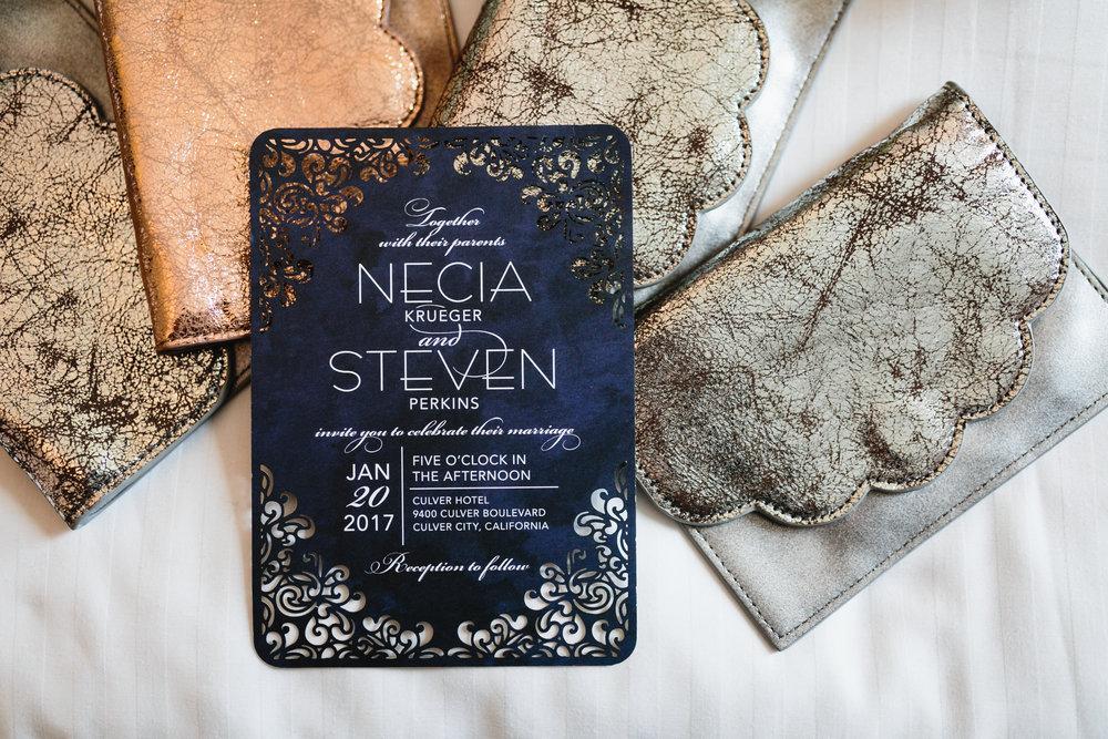 StevenNecia-Preview_1.JPG