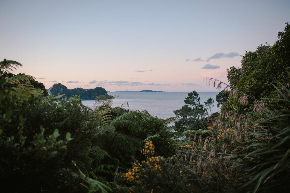 NZ_51.JPG