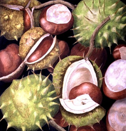 chestnuts1-copy-e1382300332978.jpg