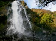 Waterfallandtrees.png