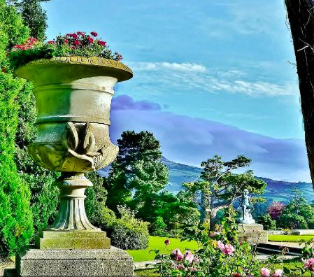 Flowerpot sky.png