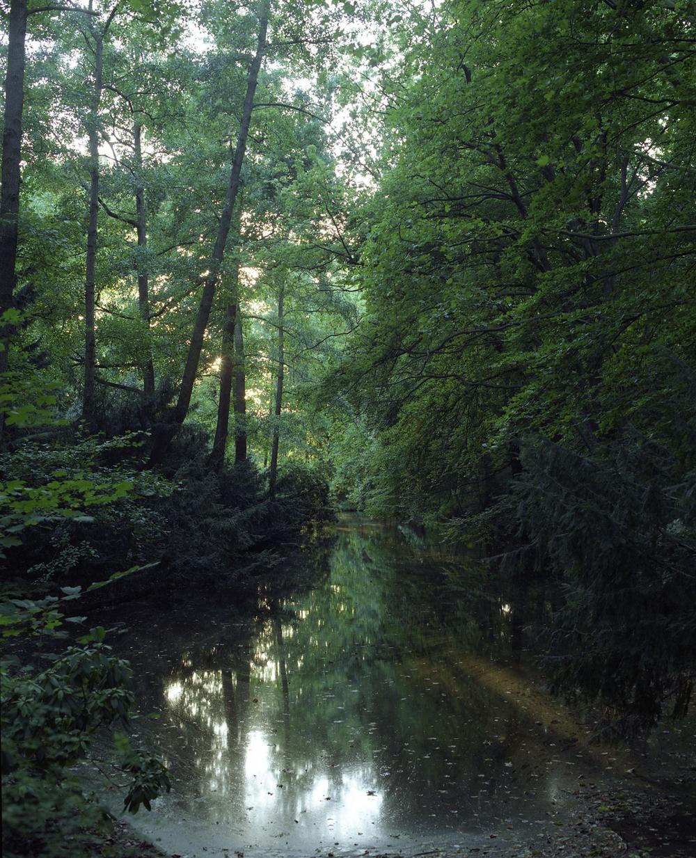 Tiergarten, 2015