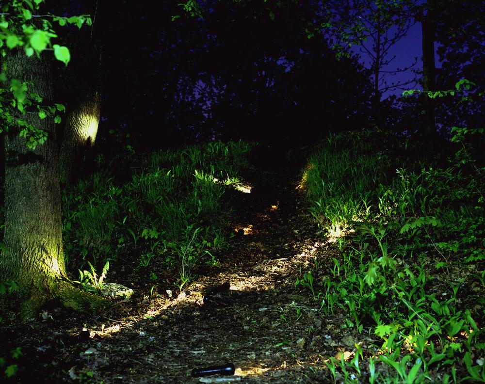 Park Scene 2, 1999