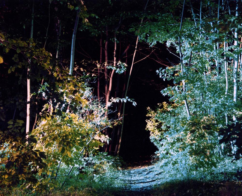 A Quiet Place 1, 2005