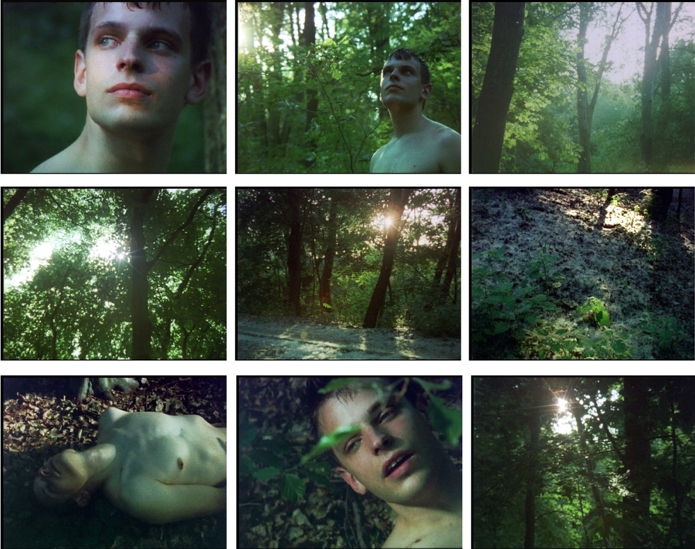 Stills from Anemophily-The Ejaculation of Spring, 2012, 16mm film transferred to video, .jpg