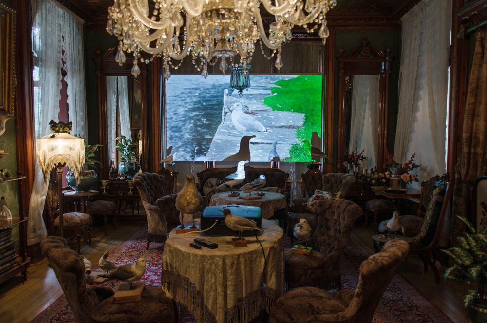 Idyll, Video Installation in the Salon, view 1