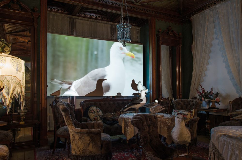 Idyll, Video Installation in the Salon, View 3