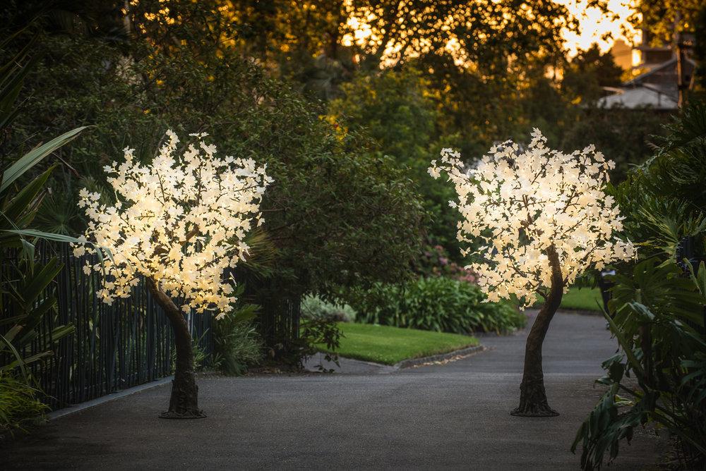Maple Tree Party Hire Decor Melbourne