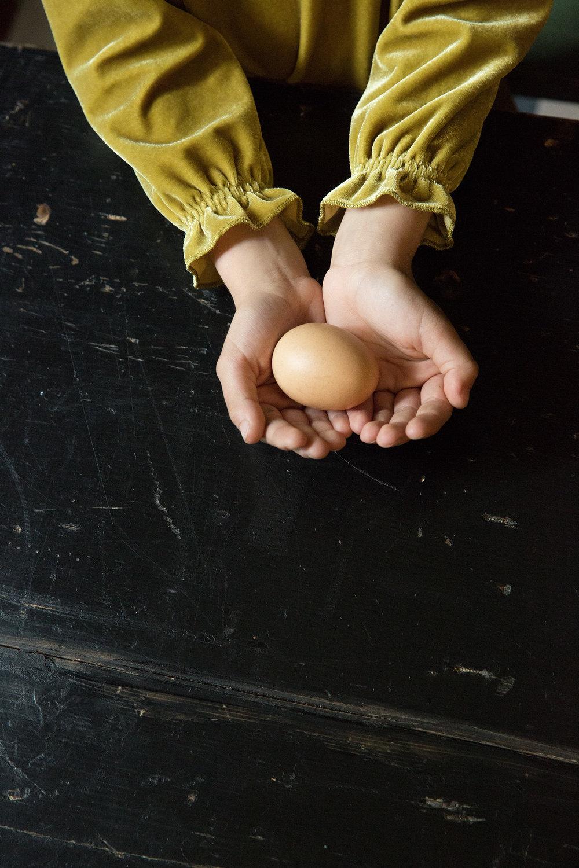 midivertounmondo_egg.jpg