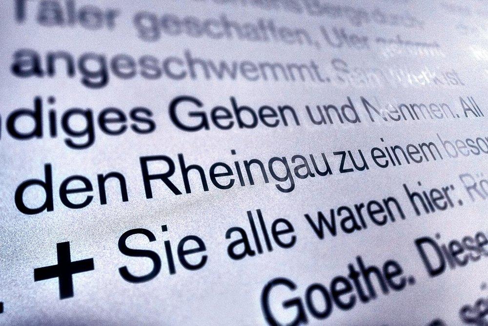 Spitzbart Kaufmann 014.jpg