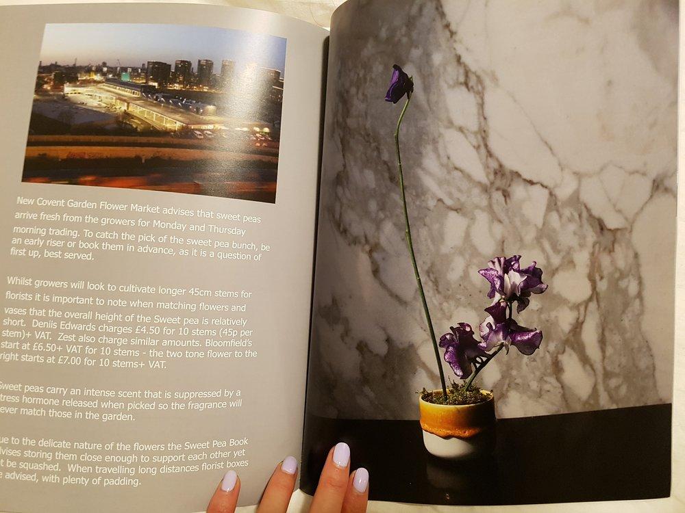 magazine sweet peas new covent garden