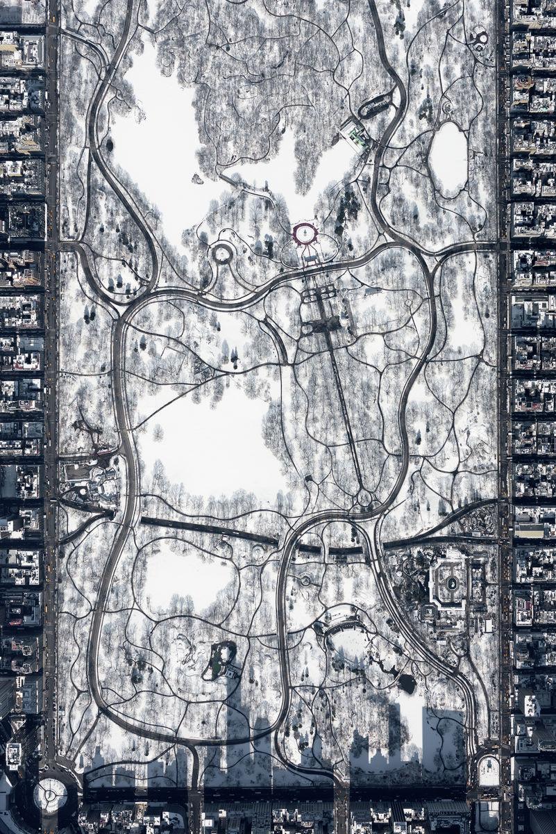 Snowy Central Park at 10,000 feet - Winner