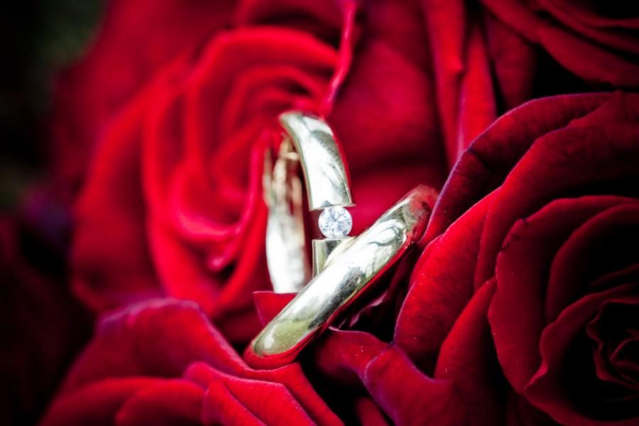 trouwringen fotograferen tussen een roos