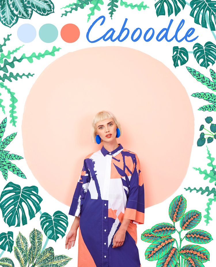 Caboodle cover.jpeg