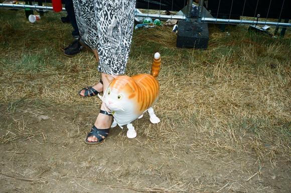 23.7.16 - CAT BALOON