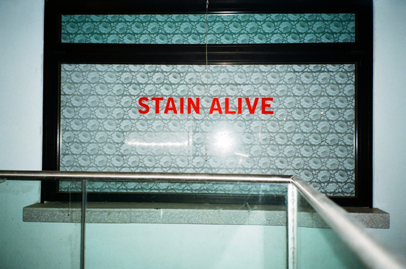 10.8.16 - STAIN ALIVE