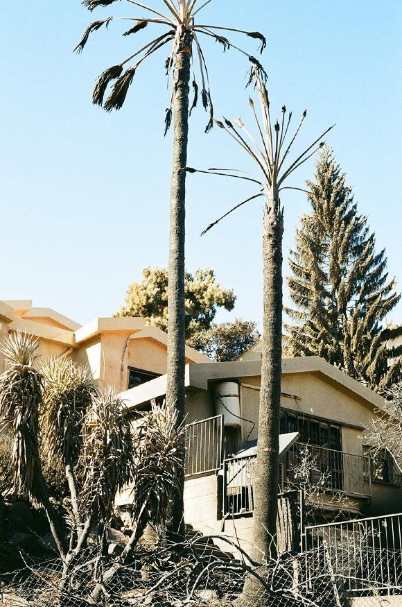 26.11.16 - haifa