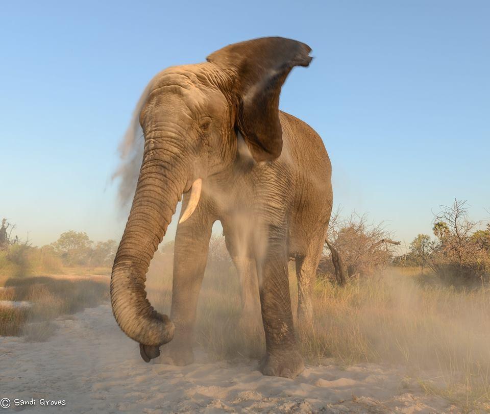 Thembi shake sand.jpg
