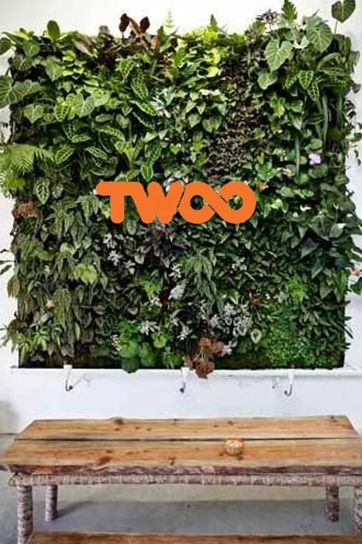 Logo TWOO tussen het groen