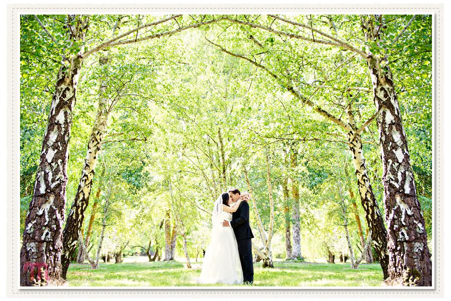 Adelaide-Pre-Wedding-Shoot-5.jpg