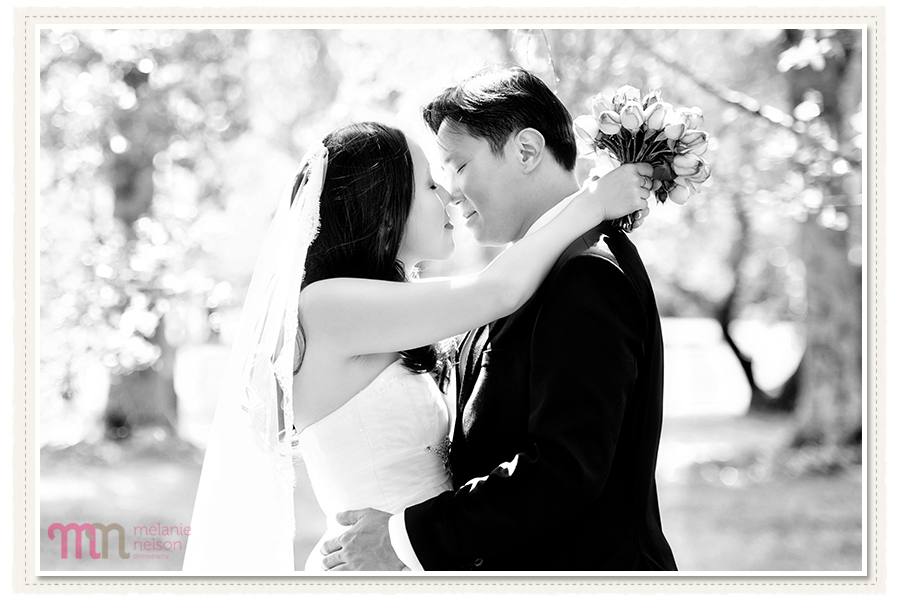 Adelaide-Pre-Wedding-Shoot-7.jpg
