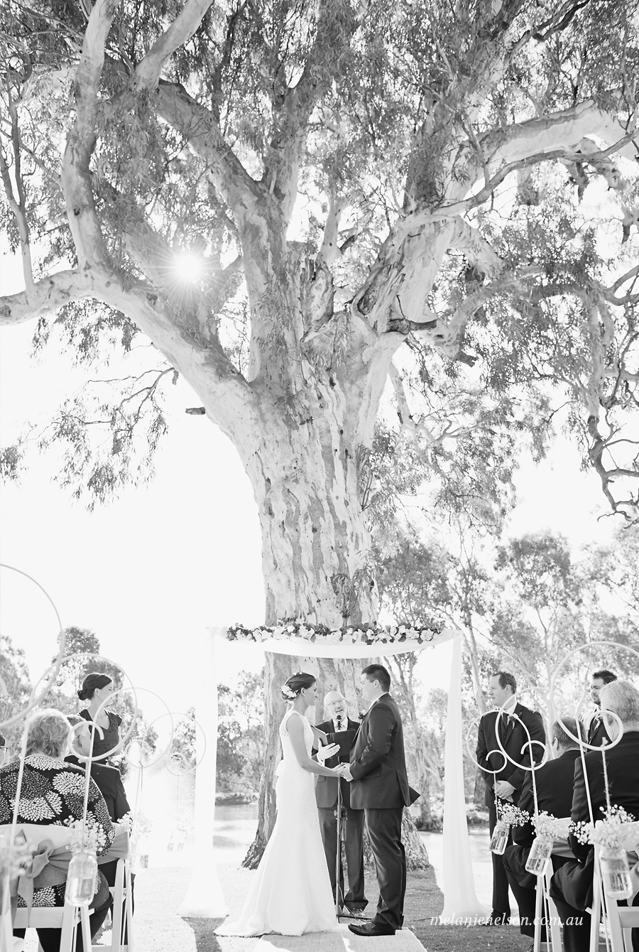 mclarenvaleweddingphotography15