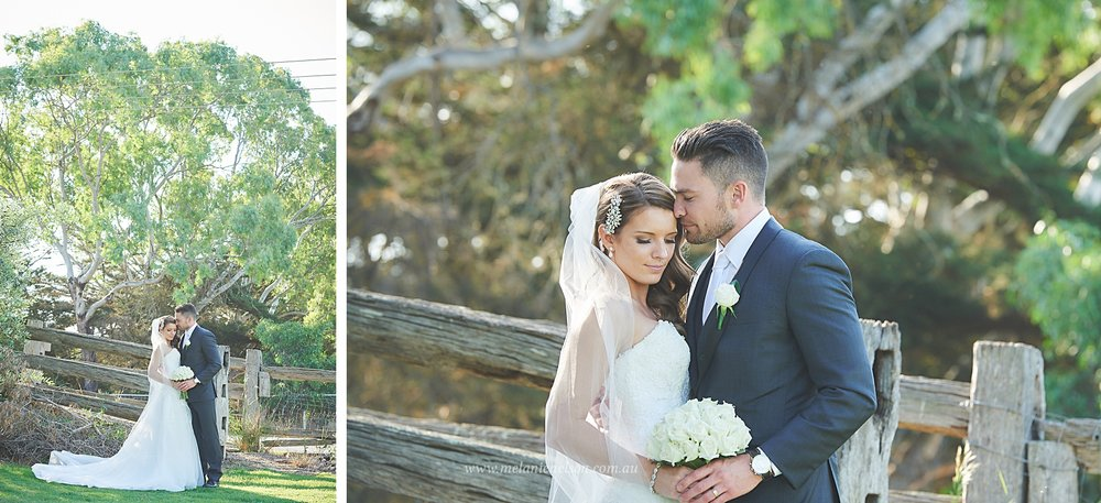 bird_in_hand_wedding_020.jpg
