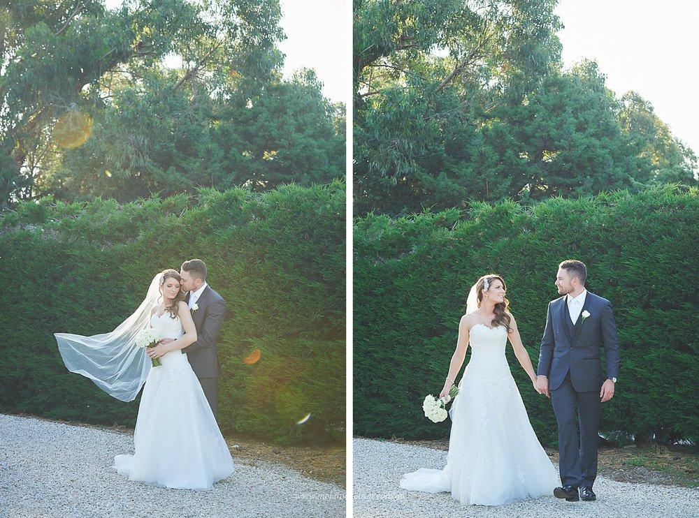 bird_in_hand_wedding_025.jpg