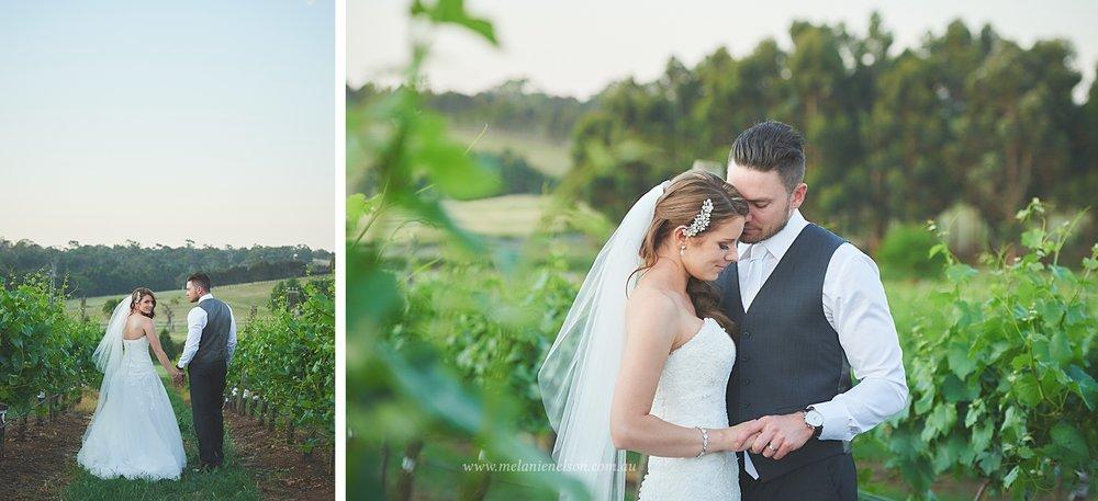 bird_in_hand_wedding_031.jpg