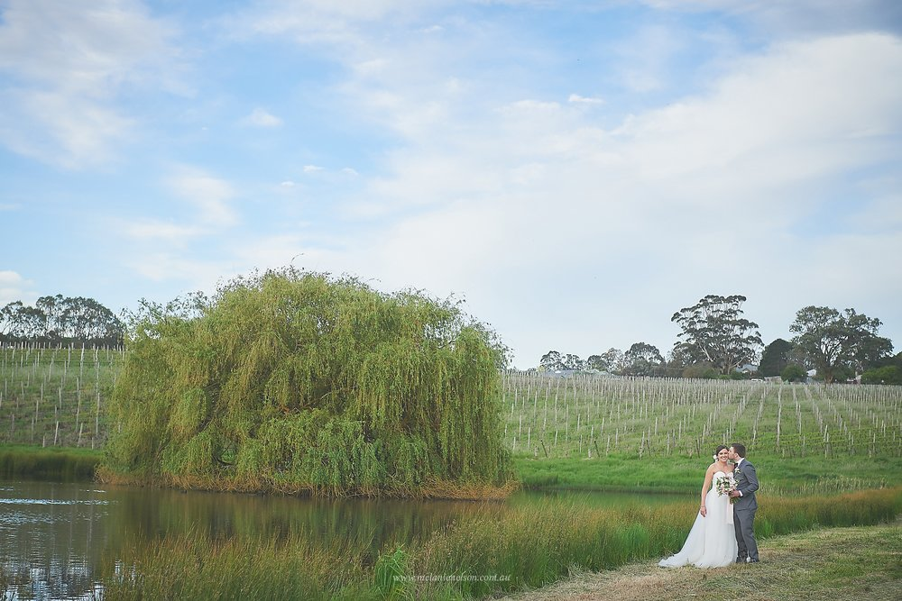 howards_vineyard_wedding_0022.jpg