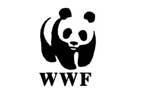how-draw-wwf-logo.jpg