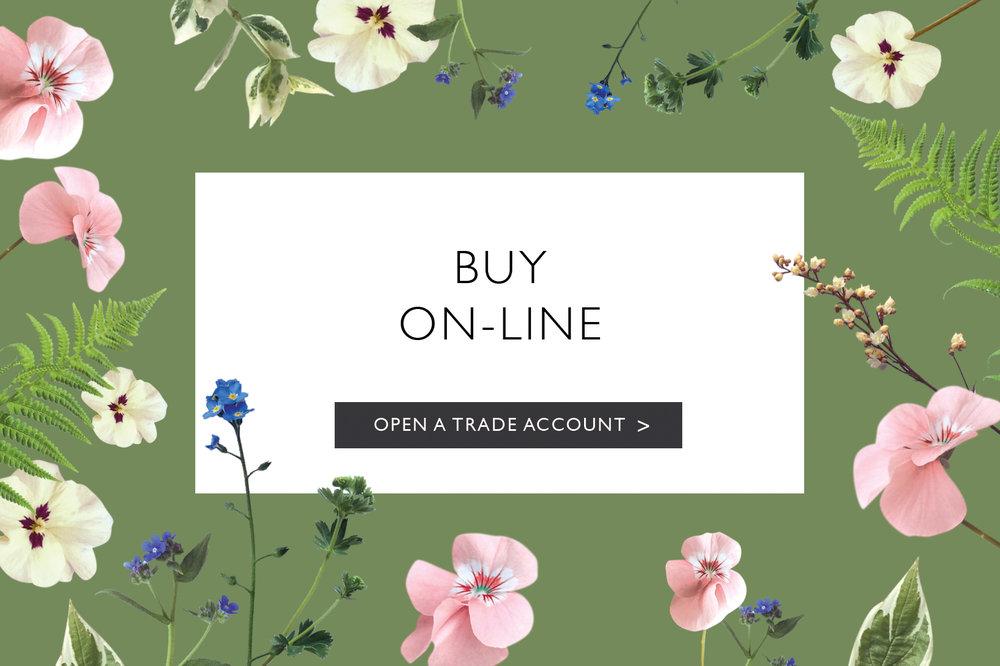 Banner Buy Online.jpg