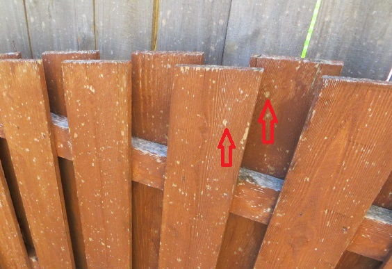 Hail damage to fence stain