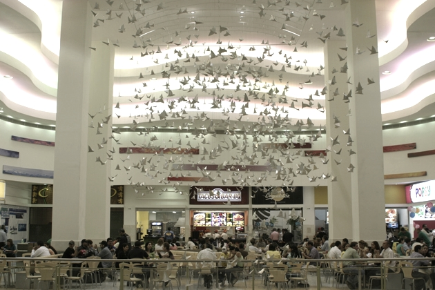 BIRDS IN FLIGHT, Los Molinos Mall, Medellin, Colombia