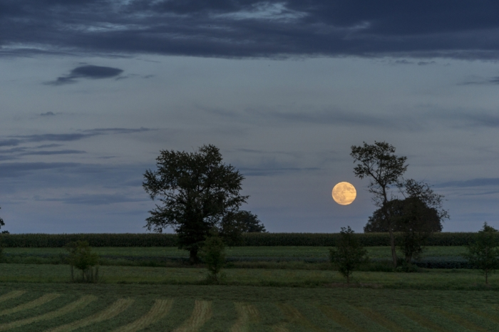 Full Moon over the Countryside
