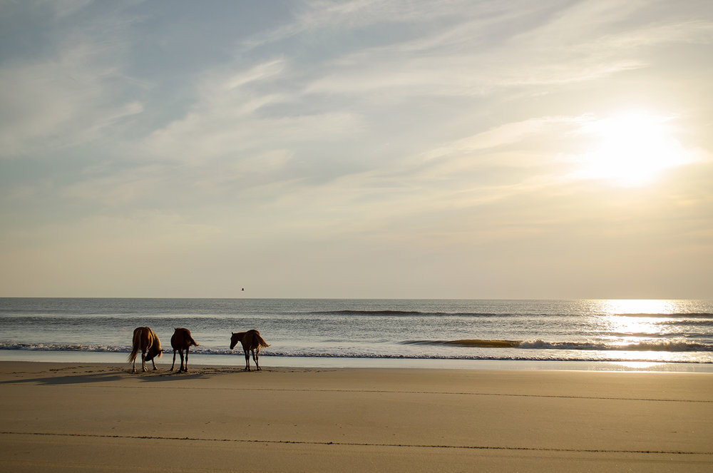 An OBX State of Mind - Feature Article - Discover one of my favorite destinations outside of Pennsylvania.