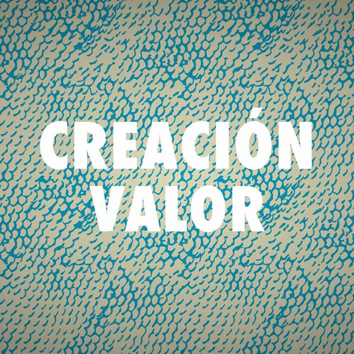 CREACION-VALOR