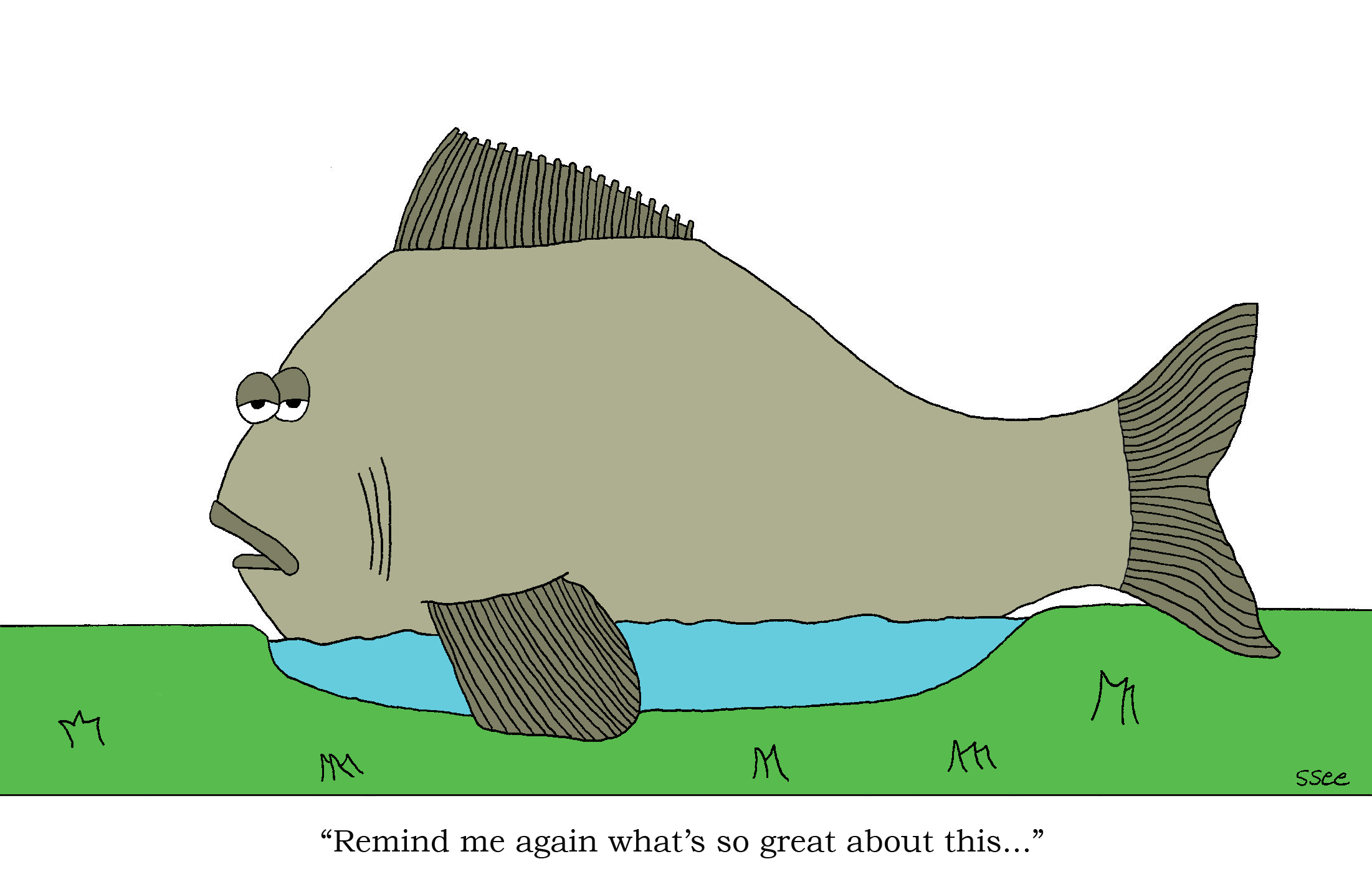 Is it better to be a big fish in a small pond?