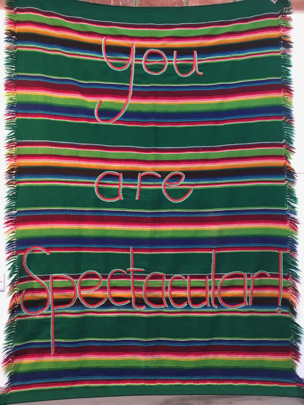 You are Spectacular   Hand sewn blanket with found saying. 2017  Cotton and wool.  1.5m x 2m