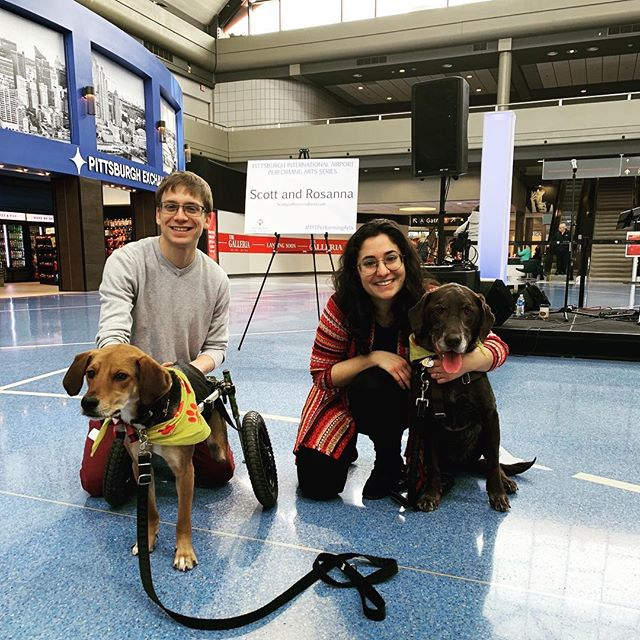 We got to hang out with Juno and @a.miracle.named.boone at the airport today! #pittpaws