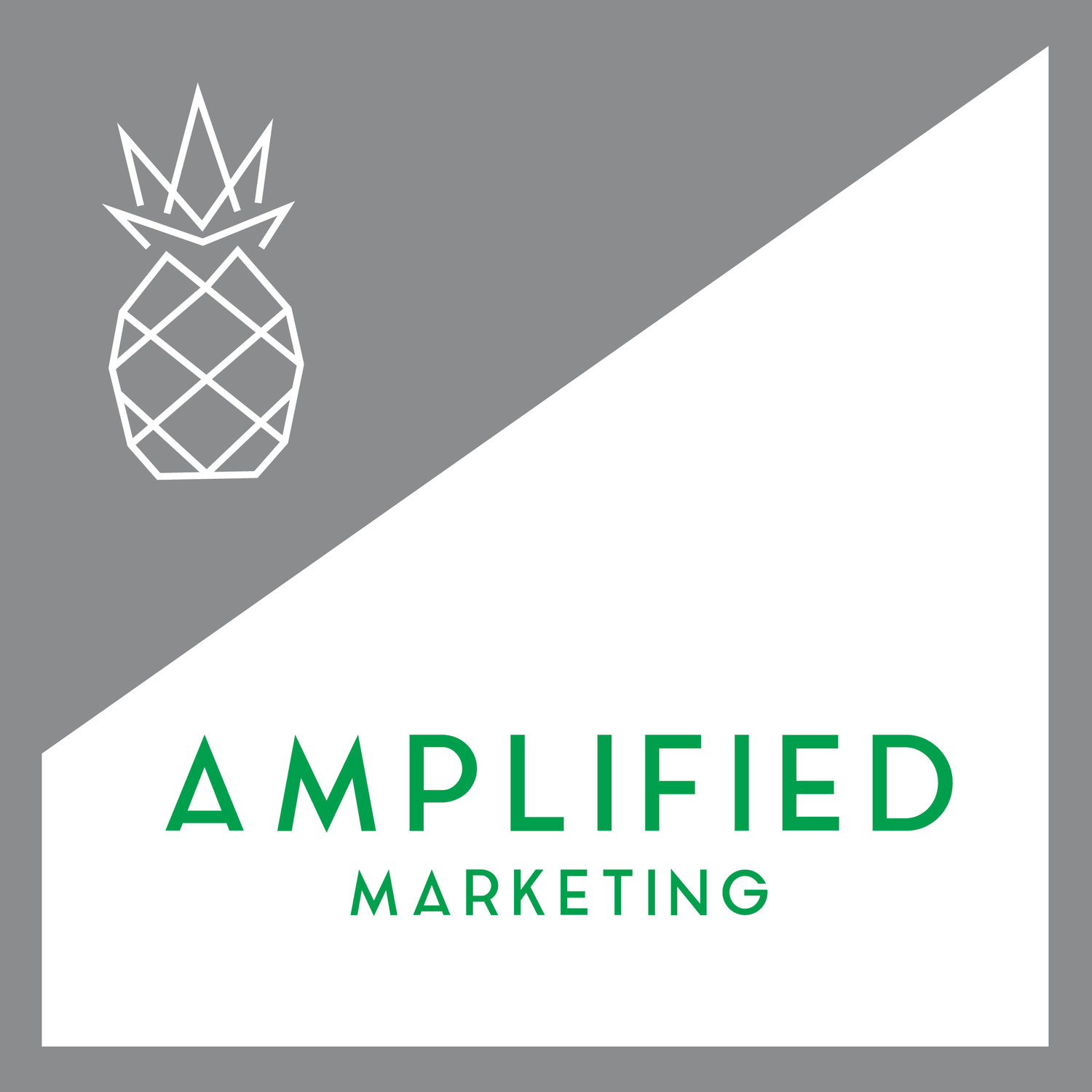 Amplified Marketing