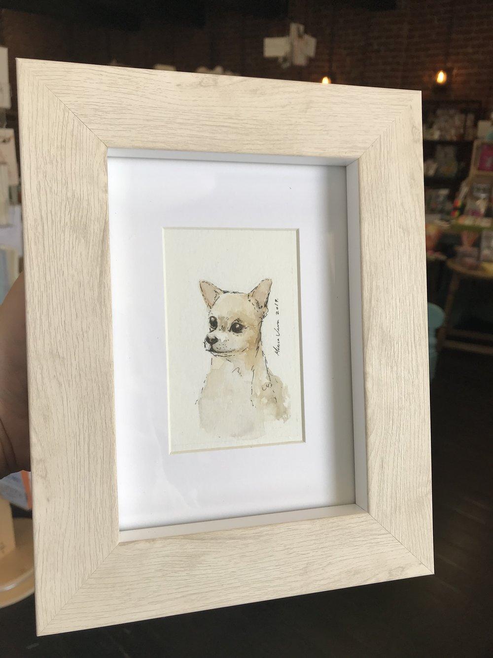 little dog 2.jpg