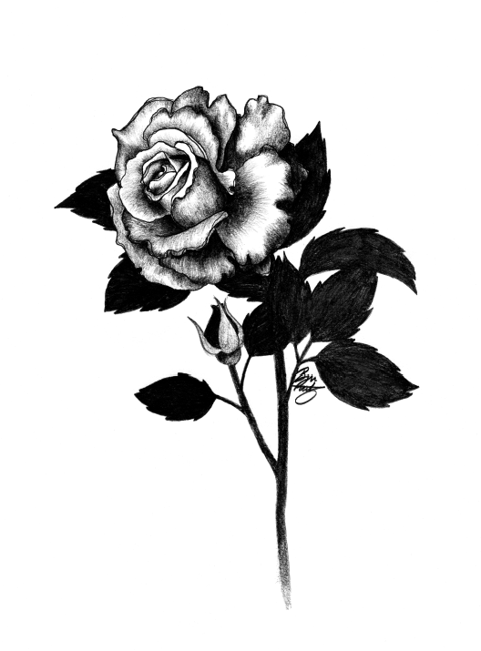 Rose by Bree Reetz.png