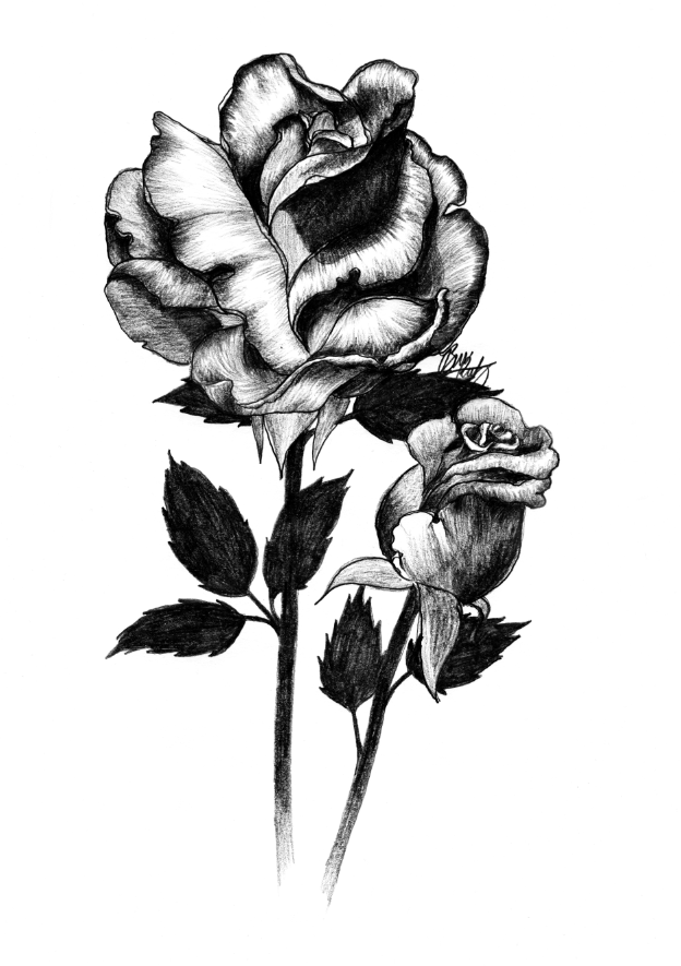 Two Roses by Bree Reetz.png