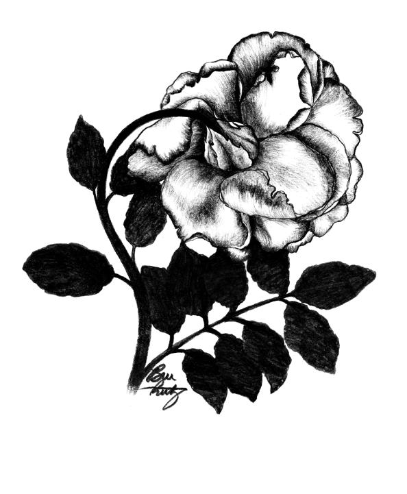 Rose in Full Bloom by Bree Reetz.png