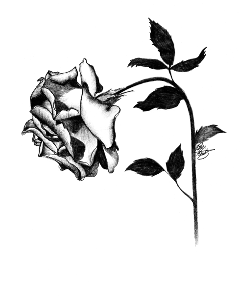 Wilting Rose by Bree Reetz.png