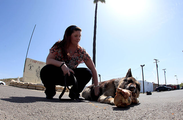 Cpl. Megan Leavey and Rex at the dog's retirement and open adoption ceremony at Camp Pendleton, Calif., April 6, 2012.