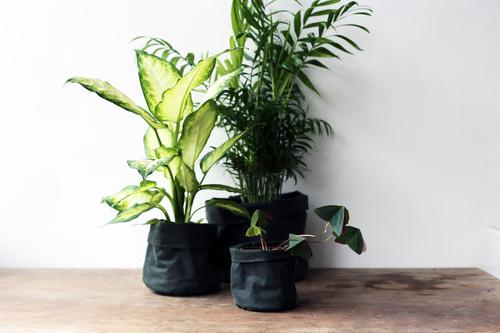 Green wax cotton waterproof oilcloth plant pots handmade